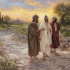 A Reflection for the Third Sunday of Easter